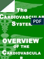 CArdiogEnitourinary(Timed)