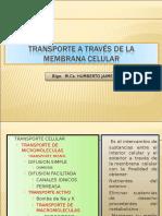 TRASNPORTE DE MEMBRANA.PPT