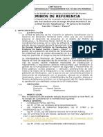 TDR Elaboracion de Perfil __ Construcción Del Sistema de Drenaje Pluvial _ Yanahuanca