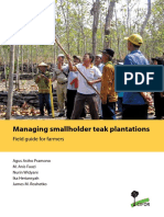 Managing smallholder teak plantations