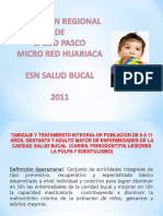 Salud Bucal 2011