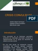 104835717-Crisis-Convulsivas.pptx