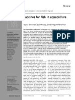 Vaccines for Fish in Aquaculture