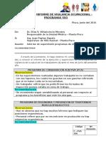 Informe de Prog Sso_junio 2016