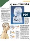 Activitati ale creierului.pdf