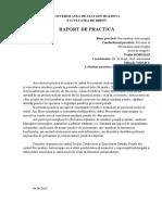Model de Raport