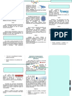 TRIPTICO ORGANISMO E INSTITUCIONES.docx