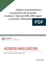 Estructura Síntesis Procesamiento y Metabolismo Acidos Nucleicos