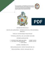Informe 1 Hidraulica 2
