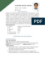 Curriculum Vitae Michel