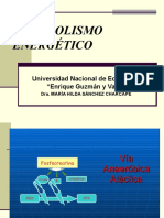 CLASE_2-METABOLISMO_ENERGÉTICO[1].ppt