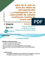 Présentation Oral de Stage M1 SIMS (2014)