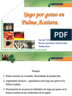 Palma Africana Ecuador