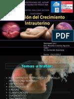 rciupresentacin-121128200141-phpapp02