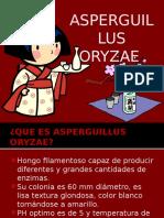 Aspergillus Oryzaeee