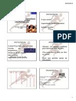 AULA SR 20m.pdf