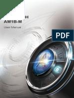 AM1B-M