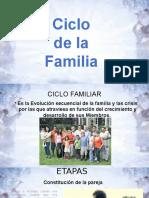 CICLO DE VIDA 2