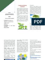 141398140 Trifoliar Medio Ambiente