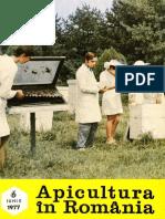 Apicultura 1977 06