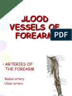 Blood Vessels of Forearm 23