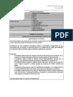 Act_Formato de Actividad IDS