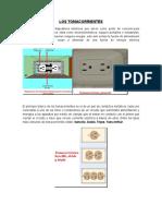 LOS-TOMACORRIENTES.docx