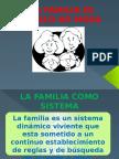 1 FAMILIA MODELO NO MODA - inicial.pptx