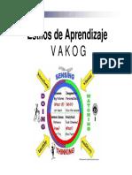 Estilos de Aprendizaje V A K O G.pdf