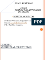 Anexo 4 - Ambiental