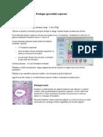 Patologia Aparatului Respirator WORD (1)