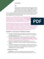 PATOLOGÍA 5TA CLASE PANCREATITIS AGUDA 22022016 2DO PARCIAL.docx