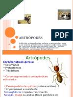 ARTROPODES ppt