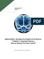 Principios de Nueroanatomia Funcional