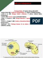 Unidad I Flujo de Información Genética I ONTIVEROS (1)