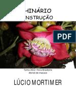 Lucio Mortimer - Instrucao - Grafica