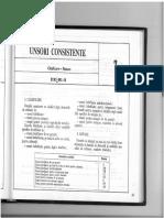 203-205 Unsori consistente.pdf