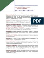 Glosario de Términos-Sistema de Gestión Presupuestaria