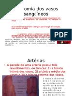 Anatomia_dos_vasos_sanguineos[1]