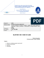 sintezaID368-2009-1