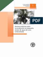 Produccion de Agua de COCO EMBOTELLADA.pdf