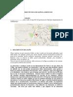 2.Informe Tecnico de Daños a Edificio(Formato)