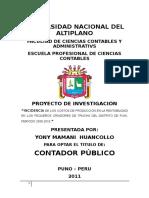 Proyecto Tesis Costos Truchas