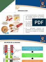 Vías de Transducción de la Insulina