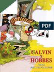 7. Calvin y Hobbes Para Principiantes