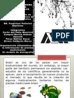 Articulo Plantilla