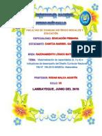 Capacidades e Indicadores Rm 199