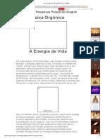 Caixa Orgonica - Energia de Vida - Imagick