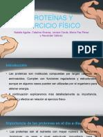 Proteínas y Ejercicio Físico / Proteínas y Deporte