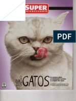 Super Interessante Nº 296 - A - Outubro de 2011 - Gatos